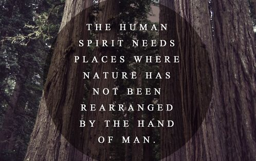 """""""The human spirit needs places where nature has not been rearranged by"""