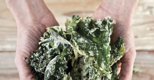Make your own kale chips! KaleChips