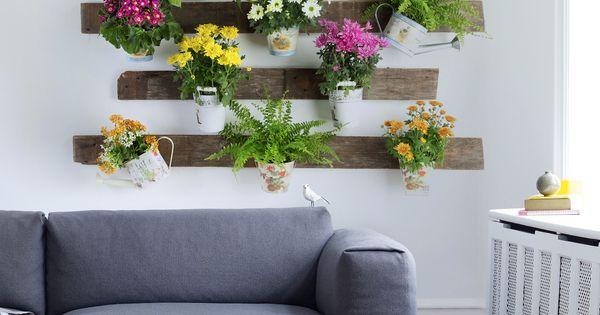 Dale un toque de dise o a tu casa con nuestra variedad de - Disena tu jardin ...
