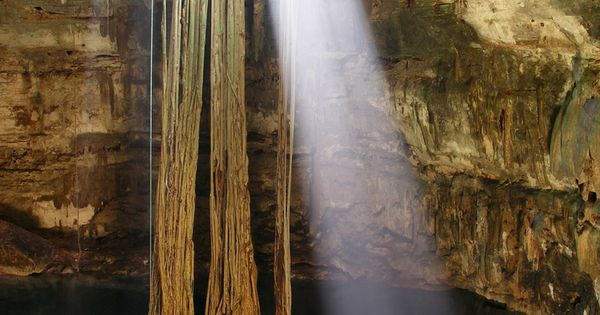 De Los Incre&237bles Cenotes Que Se Encuentran En La Pen&237nsula