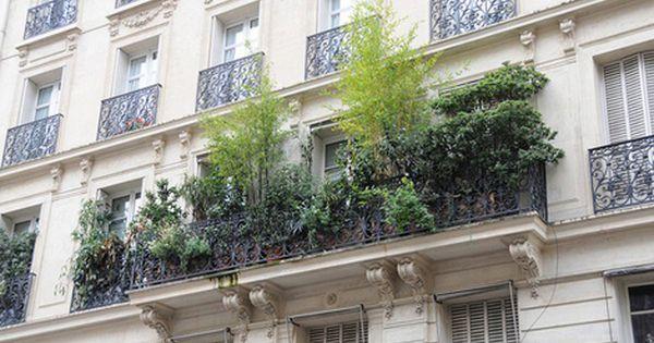 Maak van je terras een tuin roof terrace pinterest balcony plants for Maak een overdekt terras
