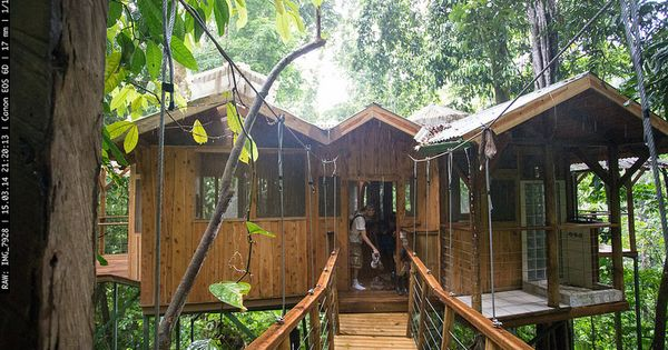 Finca Bellavista Treehouse Community Treehouse And Tree