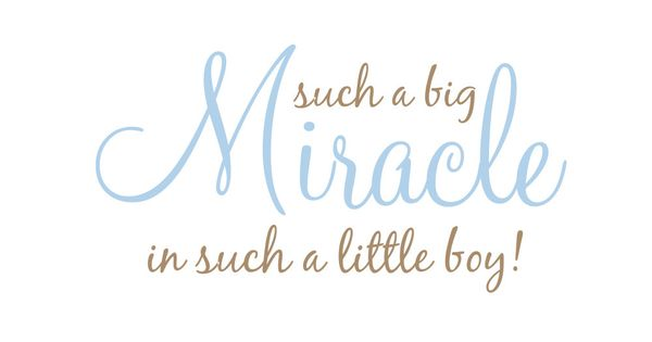 Such A Big Miracle In Such A Little Boy Or Girl Vinyl Wall