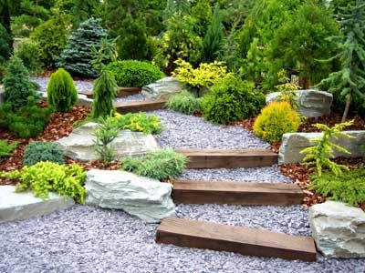 stones logs and boulders create natural rock garden with evergreens of different colors