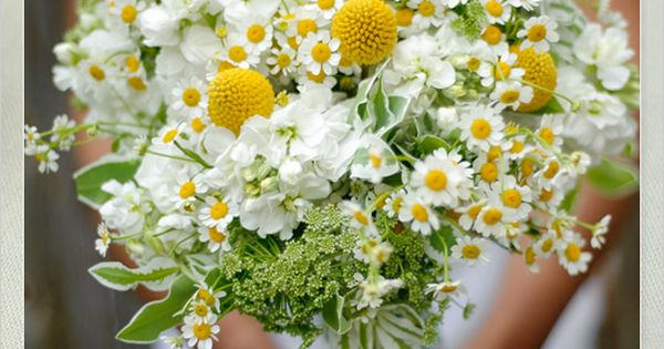 what a pretty white and yellow daisy bouquet! So springy and fresh!