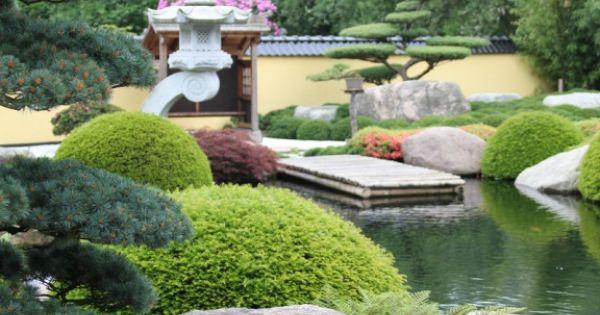 Japanse tuin met vormbomen bonsai tuinen pinterest for Spiegelvijver maken
