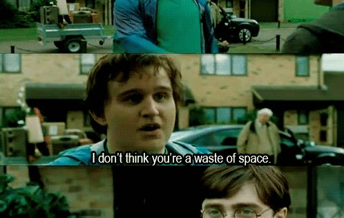 """Dudley and Harry as (semi) adults.   15 """"Harry Potter"""" Deleted Scenes"""