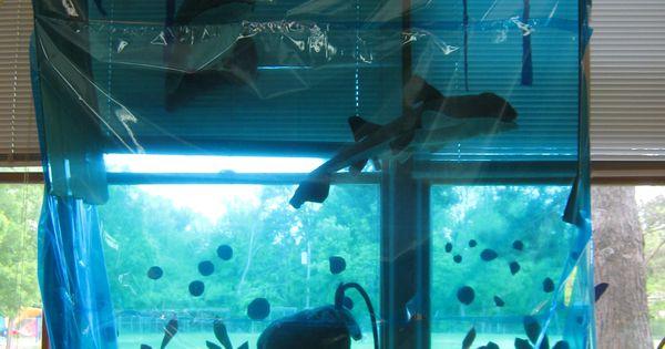 Classroom Aquarium Ideas ~ Aquarium class zoo classroom ideas i heart pinterest
