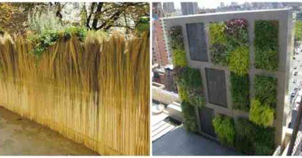 Clotures De Jardin En 59 Idees Captivantes Cloture Jardin Jardins Brise Vue Jardin