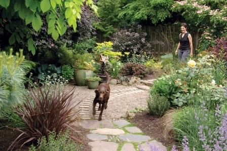 Creating a dog friendly water efficient yard yards for Dog friendly landscape design