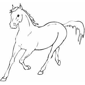 Running Horse Printable Coloring Page Free To Download And Print