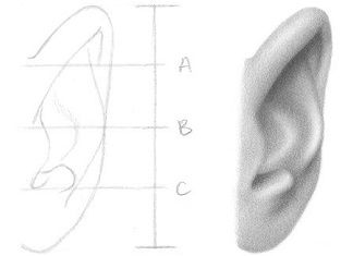 How To Draw An Ear 5 Easy Steps How To Draw Hair How To Draw Ears Face Drawing