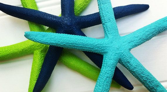 "Sea starfish set of 3 6"" painted navy blue aqua lime green"