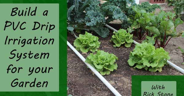 PVC Drip Irrigation System Garden Pinterest Drip