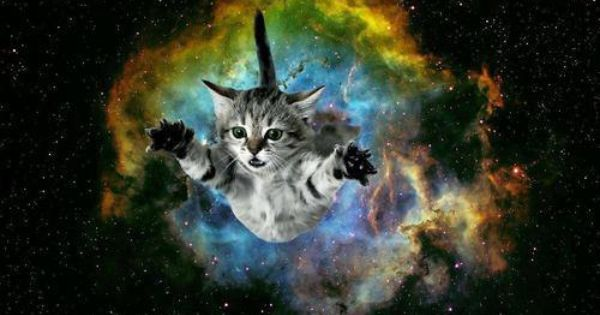 cat bursting from galaxy background | Galaxy | Pinterest ...