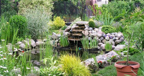 Como hacer un estanque de agua para el jardin jardineria for Como construir un estanque en el jardin