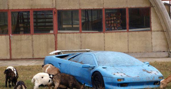 A Diminished Lamborghini With Images Abandoned Cars Abandoned