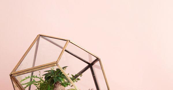 terrarium faire soi m me mamie boude diy pinterest. Black Bedroom Furniture Sets. Home Design Ideas