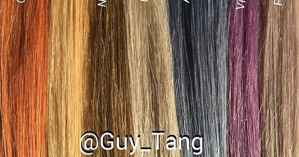 These Are The Guytang Pravana Express Tones Swatches Used