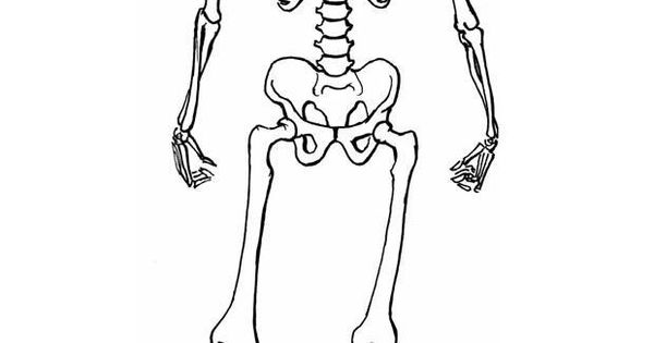 skeleton template to cut out - skeleton template cut out big this class pinterest