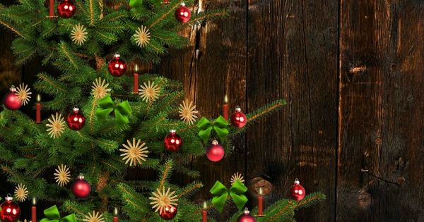 How To Keep A Real Christmas Tree Alive Longer Real