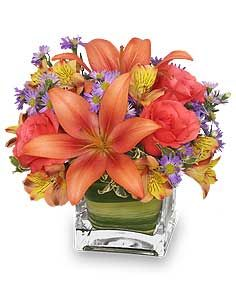 Broward West Flowers Birthday Flowers Fall Flower Arrangements Birthday Flowers Arrangements