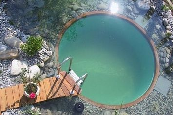32 Cheap And Easy Backyard Ideas That Are Borderline Genius Easy Backyard Backyard Natural Swimming Pools