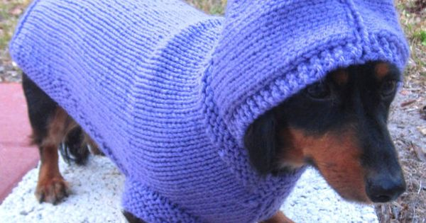 Knitting Patterns For Dog Hoodies : Dog Hoodie-hand knit dog hoodie/Daschund sweater/Whippet sweater/Italian Grey...