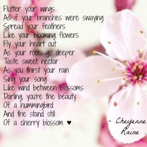 Wings Petals Feathers Heart Grow Sweet Nectar Beauty Poem Poetry Cherry Blossom Quotes Blossom Quotes Flower Poem