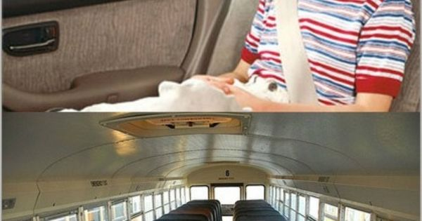 school bus seatbelts are they really Why aren't school buses required to have seat belts be used inside school buses seat belts must be constructed in use a seat belt why must they have.