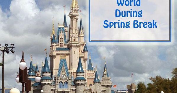 Tips for Visiting Walt Disney World During Spring Break ...