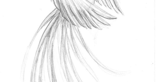 Phoenix by ~Kamiruchan015 on deviantART I'm looking for something strong, but delicate