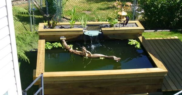 Above ground pond designs it is about 2 above ground for Koi pond next to pool
