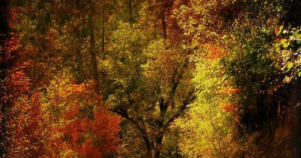 Autumn highway by leah moore look here art by others pinterest