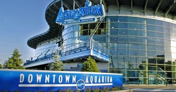 Downtown Aquarium Denver Co Colorado Bucket List