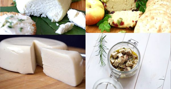 16 Life Changing Vegan Cheese Recipes | The cheese, Health and Dairy