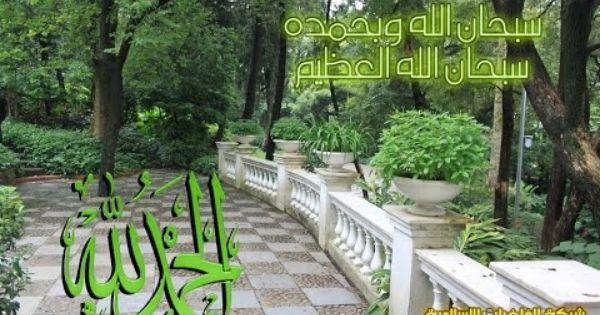 تلاوة رائعة سورة نوح الشيخ محمد صلاح نافع Www Qoranet Net Garden Bridge Outdoor Structures Outdoor