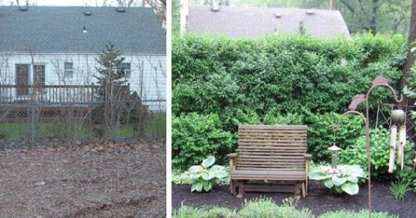 Landscaping Ideas To Hide Ugly Fence : Outdoor privacy ideas to hide ugly views and nosy neighbors fence it