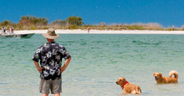Dog Beach Park Directions Information Map Hours Must Do Visitor Guides Dog Beach Dog Friendly Beach Bonita Beach