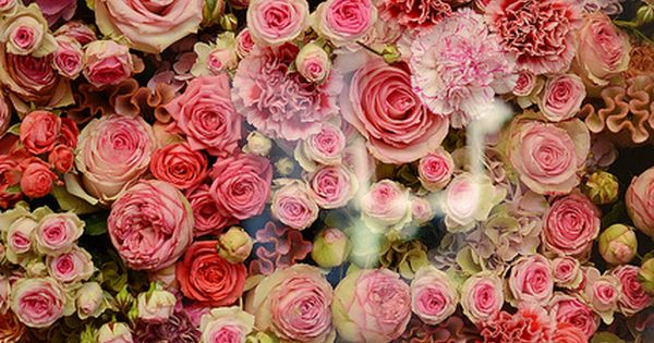 Rose bouquet - In the Christian Dior Window Display