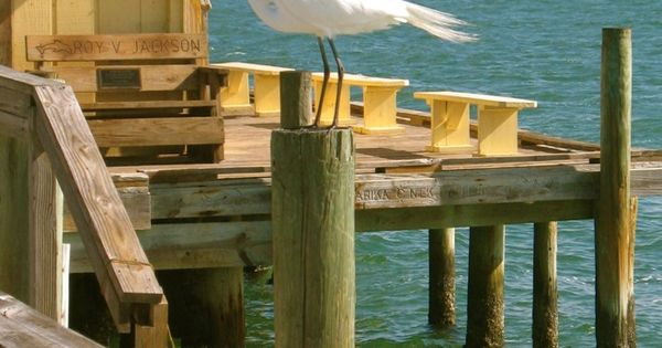 Rod and reel pier anna maria island facebook anna maria for Best pier fishing rod