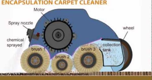 Smart Care Trio Carpet Cleaning System From Whittaker System Carpet Cleaning Machines Carpet Cleaning Equipment Industrial Carpet