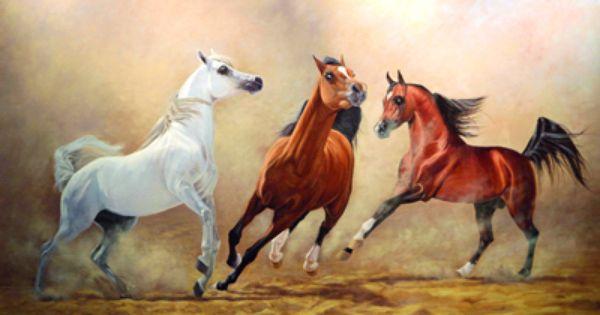 Arabian Horse Art Horses Arabian Horse