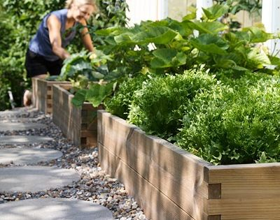 Potager en carr am nagement ext rieur pinterest for Amenagement jardin carre