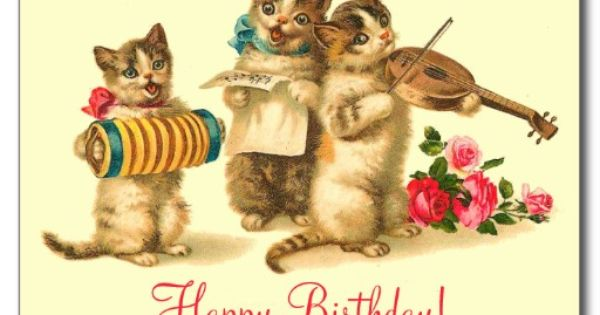 Funny Birthday Cats Pictures