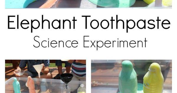 Elephant Toothpaste Experiment Discover More Ideas About