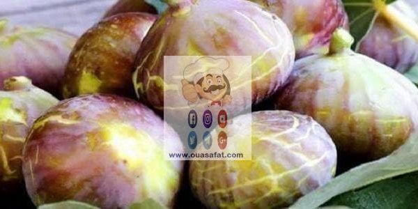 فوائد واستخدامات فاكهة التين الجزأ الثاني Fig Food Vegetables
