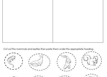 day 32 mammal and reptiles cut and paste worksheet unit ideas mammals pinterest reptiles. Black Bedroom Furniture Sets. Home Design Ideas