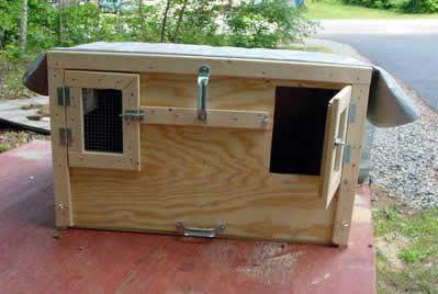 Building A Dog Box For Beagles Dog Box Dog Box For Truck