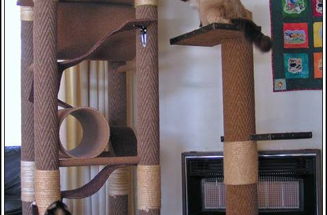 diy cat tree | Here are some examples of kitty jungle gyms